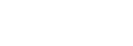 Logo IDF blanc